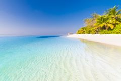 Изумительный ландшафт пляжа место природы тропическое Пальмы и голубое небо Концепция летнего отпуска и каникул стоковая фотография