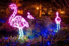Изумительный художник ` Artista ` Luci d ` освещает в Salerno во время времени рождества, кампании, Италии Стоковое фото RF