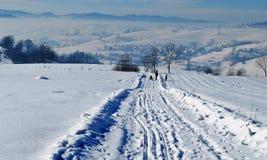 изумительная зима ландшафта Стоковые Фото