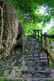 Изумительная каменная лестница, загородка, дерево Стоковые Фото