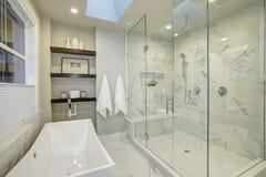 Изумительная мастерская ванная комната с большой стеклянной душевой кабиной Стоковые Изображения RF