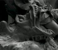 Изумительная тварь Стоковые Фото