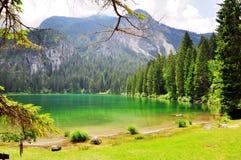 Изумительное зеленое озеро в итальянке Альпах Стоковая Фотография