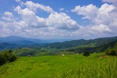 Изумительное поле террасы риса Стоковая Фотография