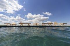 Изумительные взгляды над бассейном с деревянными loungers солнца Стоковая Фотография