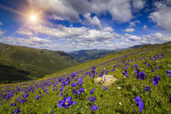 Изумительный ландшафт с взглядами гор стоковые фотографии rf