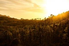 Изумительный взгляд горных пиков с красивыми облаками на заходе солнца Положение: Тенерифе, Канарские острова, Испания наконечник Стоковая Фотография