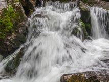 Изумительный водопад в глубоком ландшафте леса Стоковая Фотография RF