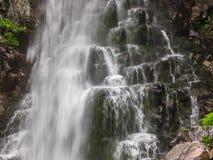 Изумительный водопад в глубоком ландшафте леса Стоковое Изображение