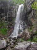 Изумительный водопад в глубоком ландшафте леса Стоковые Изображения