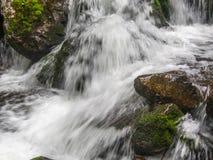 Изумительный водопад в глубоком ландшафте леса Стоковое Изображение RF