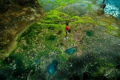 Изумительный естественный аквариум в острове прибрежных утесов тропическом с рыбами в реальном маштабе времени Стоковое фото RF