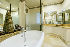 Изумительный интерьер ванной комнаты с стенами и статуями зеркала Стоковые Фотографии RF