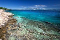 Изумительный пляж с cristalic чистой морской водой с соснами внутри стоковая фотография rf