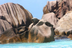 Изумительный утес на пляже Стоковые Изображения