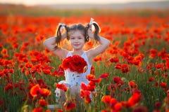 Изумлять близко вверх по портрету прекрасной милой молодой романтичной девушки с цветком мака в руке представляя на предпосылке п стоковая фотография