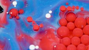 Изумлять красные и голубые пузыри краски на поверхности масла Краска в масле видеоматериал