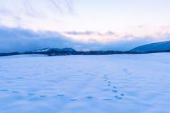 Изумляя красивый заход солнца зимы в горах стоковое фото rf