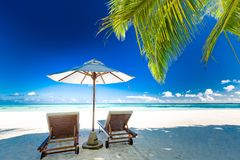 Изумляя панорама пляжа Тропическое знамя ландшафта праздника стоковое фото