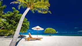 Изумляя панорама пляжа Тропическое знамя ландшафта праздника стоковые фото
