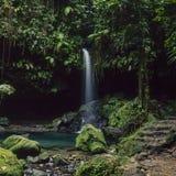 изумрудный водопад бассеина Стоковые Фотографии RF