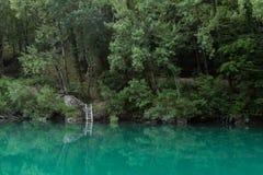 Изумрудное река Стоковое Изображение RF