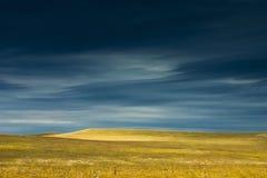 Изумляя ландшафт заповедника прерии Канзаса Tallgrass Стоковые Изображения RF
