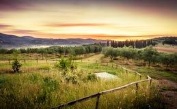 Изумляя тосканский восход солнца Стоковое Фото
