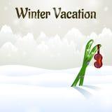 Изумлённые взгляды лыжи каникул зимы на катании на лыжах Стоковое Изображение