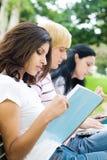 изучать студентов Стоковое Изображение