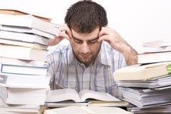 изучать человека Стоковая Фотография RF