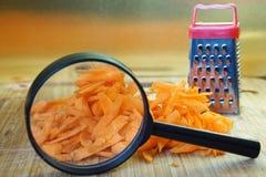 Изучите качество овощей Поиск для особенностей моркови используя лупу стоковые изображения