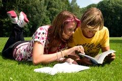 изучьте лето Стоковая Фотография RF