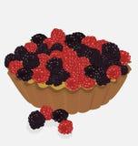 Изысканный красный цвет приносить десерт tartlet Стоковое фото RF