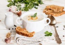 Изысканный cream суп с champignons грибов Стоковые Фото