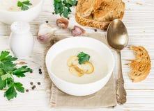 Изысканный cream суп с champignons грибов Стоковая Фотография