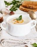 Изысканный cream суп с champignons грибов Стоковое Изображение
