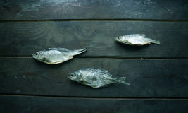 3 из высушенных рыб Стоковое Фото