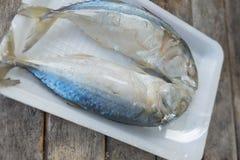2 из испаренных рыб скумбрии Стоковые Изображения RF