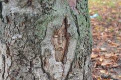 Иисус на дереве Стоковые Фотографии RF
