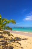 икона пляжа стоковые фотографии rf