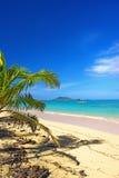 икона пляжа стоковые фото