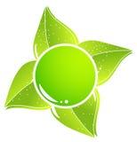 икона eco просто Стоковые Фотографии RF