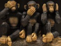 Иконические обезьяны Стоковые Фотографии RF