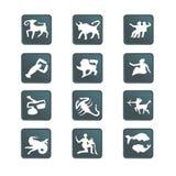иконы иллюстрация цвета кнопок мое портфолио к гостеприимсву вектора Все знаки зодиака бесплатная иллюстрация