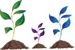 иконы окружающей среды иллюстрация вектора