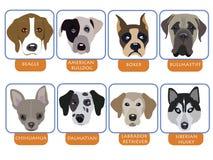 иконы собаки Стоковая Фотография RF