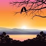 Иллюстрации вектора, любовники птицы стоковая фотография rf