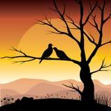 Иллюстрации вектора, любовники птицы стоковые фотографии rf