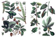 Иллюстрации заводов бесплатная иллюстрация